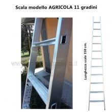 Scala per Agricoltura 11 gradini particolare