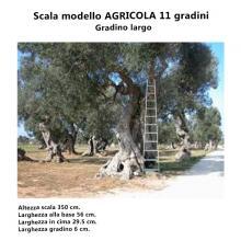 Scala per Agricoltura - 11 gradini dettagli