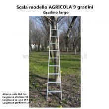 Scala per Agricoltura - 9 gradini particolari