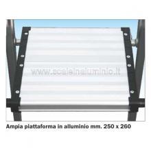 Scala a salita singola 5 gradini - piattaforma in alluminio 250 x 300